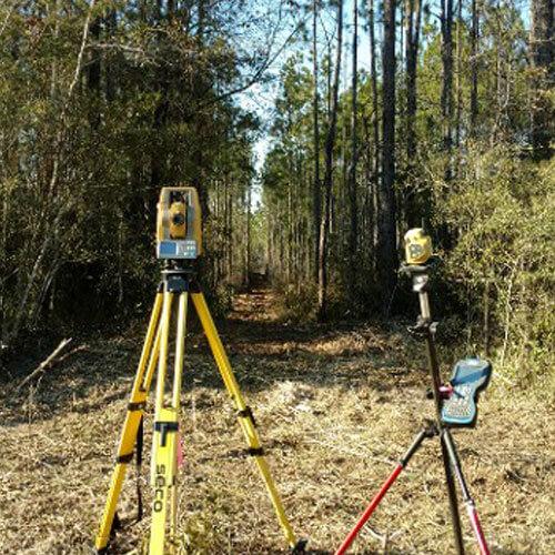 Survey Line Clearing   Forest City Landworks